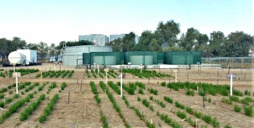 Irrigation System Construction Project - Expo 2020